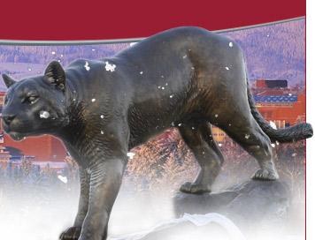 Cougar Pride Statue