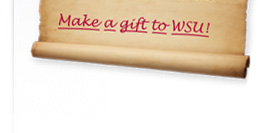Make a gift to WSU!